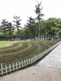 绿色草坪园林景观