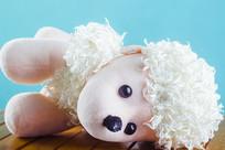一只躺倒的毛绒狗