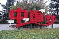 中国梦花坛