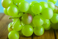 绿色的葡萄道具