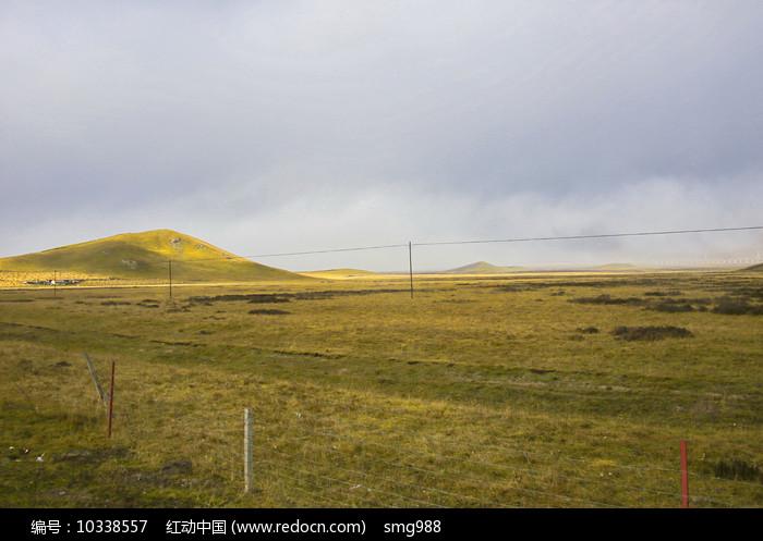 草地掠过阳光图片