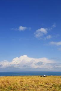 大美青海湖美景