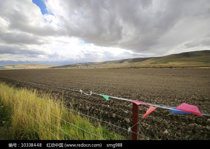青藏农田图片