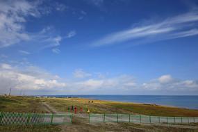 青海湖岸草场