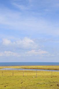 青海湖草甸美景