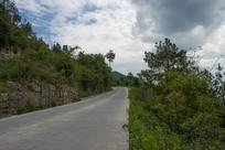 西部山区公路与森林植被