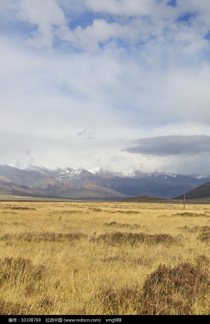 雪山草地图片