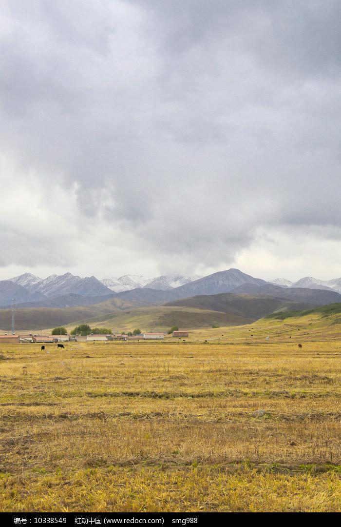 雪山下的草坡秋色图片