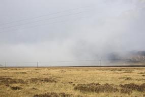 云雾弥漫在金秋草原