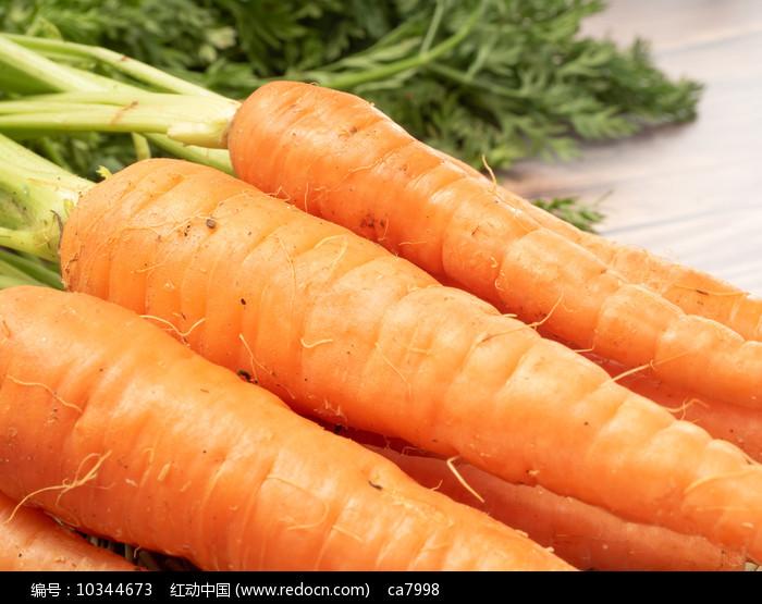 水果萝卜 图片