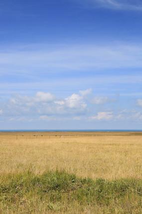 蓝天下的青海湖草原