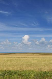 青海湖畔蓝天草原