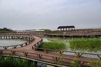 太湖湿地湾
