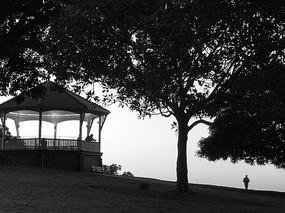 悉尼公园夜景