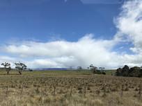 澳洲私家牧场