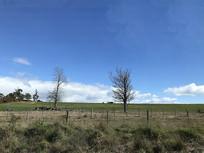 澳洲私人牧场