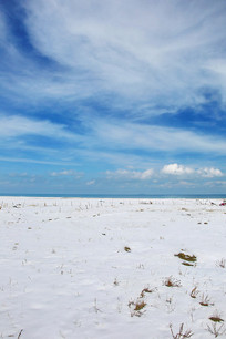 青海湖雪景