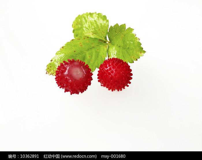 两颗野草莓图片