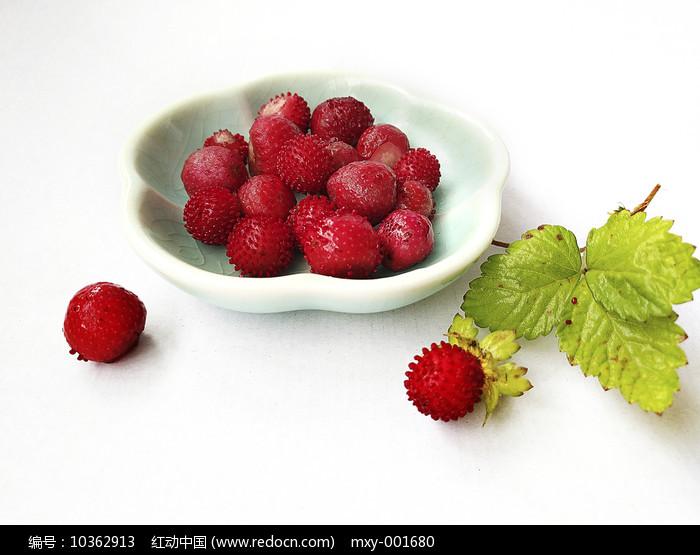 野草莓果图片