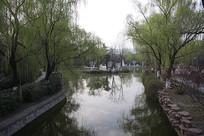 宝鸡植物园里的小湖