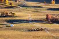 蒙古包牧马