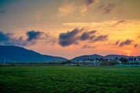 夕阳下的农田