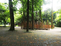 森林里的广场