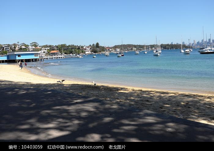 悉尼海湾沙滩图片