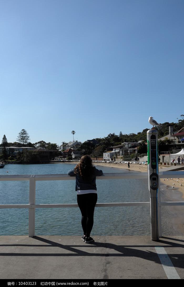 悉尼屈臣氏湾图片