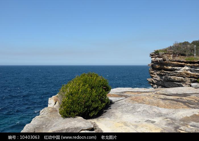 悉尼岩石海滩图片