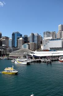 悉尼达令港轮船码头