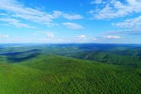 大兴安岭绿色山林
