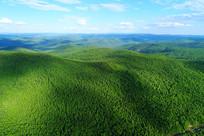 大兴安岭绿色山峦