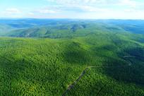 大兴安岭山林树林景观