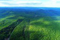航拍大兴安岭通往山林的公路