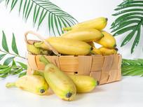 绿叶背景里竹篮中的芭蕉