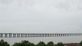 西湾红树林边高架桥