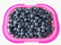 白底鲜果蓝莓
