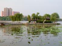 济南大明湖上的小岛