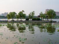济南大明湖水面建筑