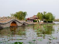 济南大明湖小桥和垂柳