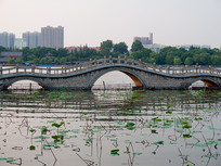山东济南大明湖上的拱桥