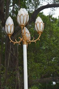 公园景观灯