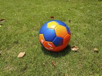 校园菜地足球