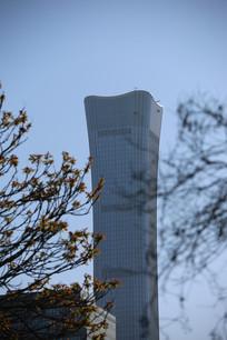 远处拍的中国尊高楼