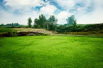 草坪边的路和桥