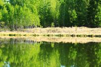 大兴安岭森林湖风景