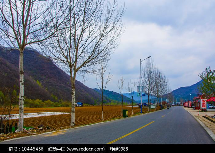 丹东宽甸青山沟公路树木与山峰图片