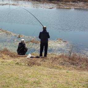 河边的钓鱼老人背影