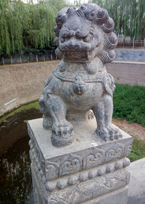 威武的石狮子雕刻